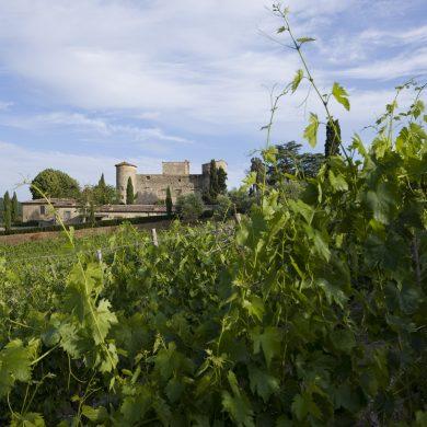 castle-farms-wedding-cost