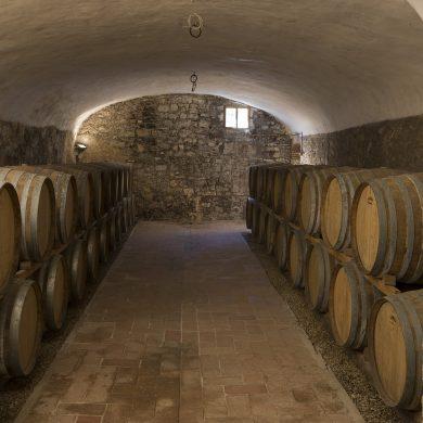 vinery-castle