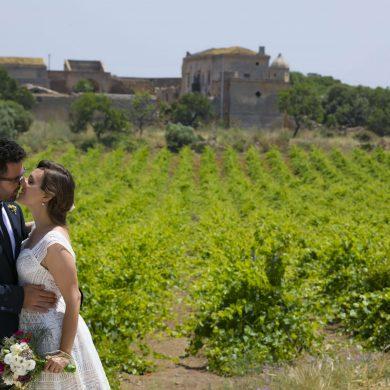 wine-weddings